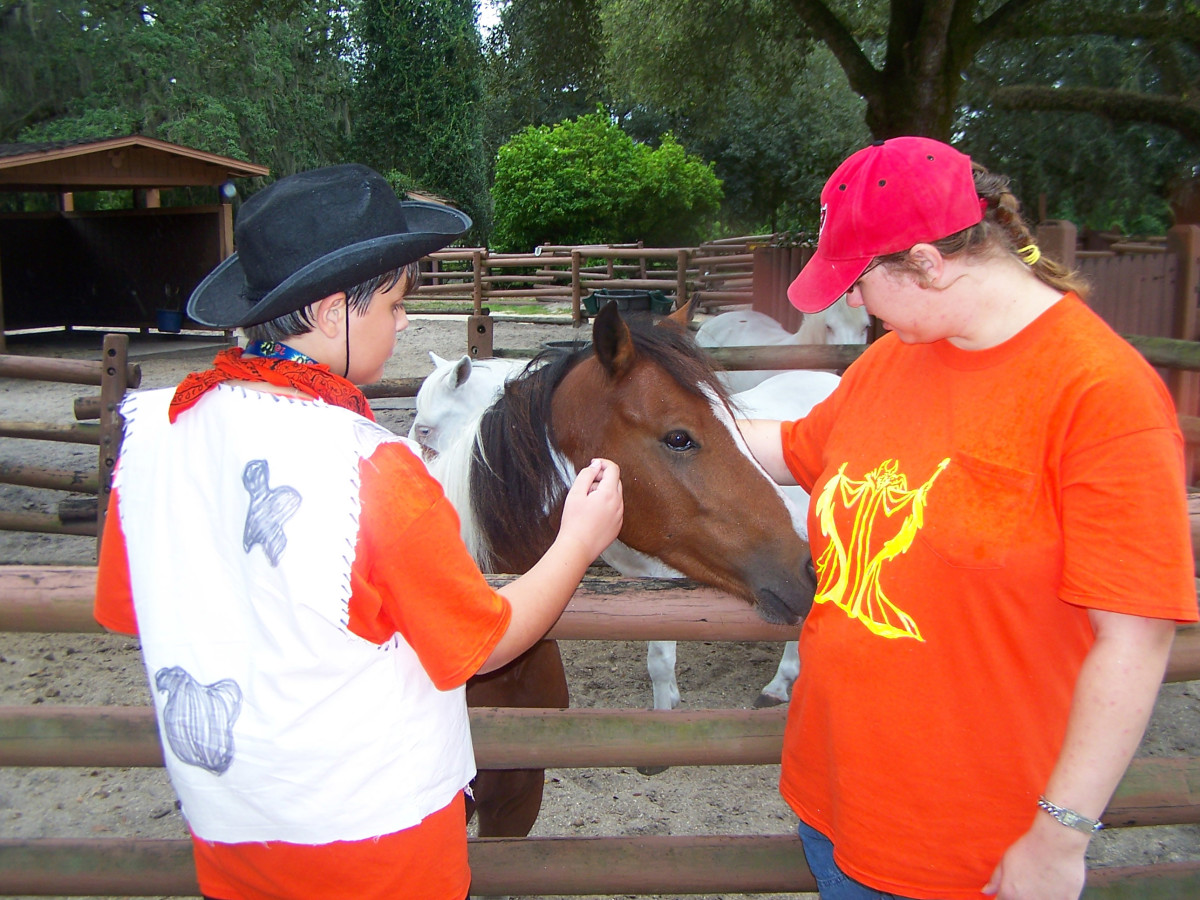 Fort Wilderness is a very casual, outdoorsy experience-- stop and pet the ponies.