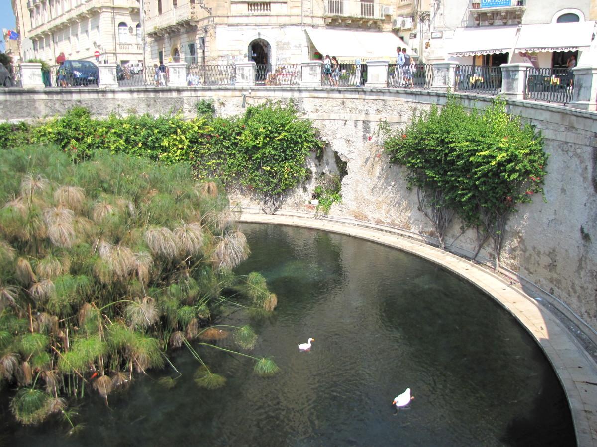 Fountain of Arethusa.