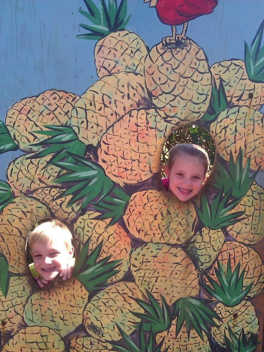 Having fun at the Dole Pineapple Plantation