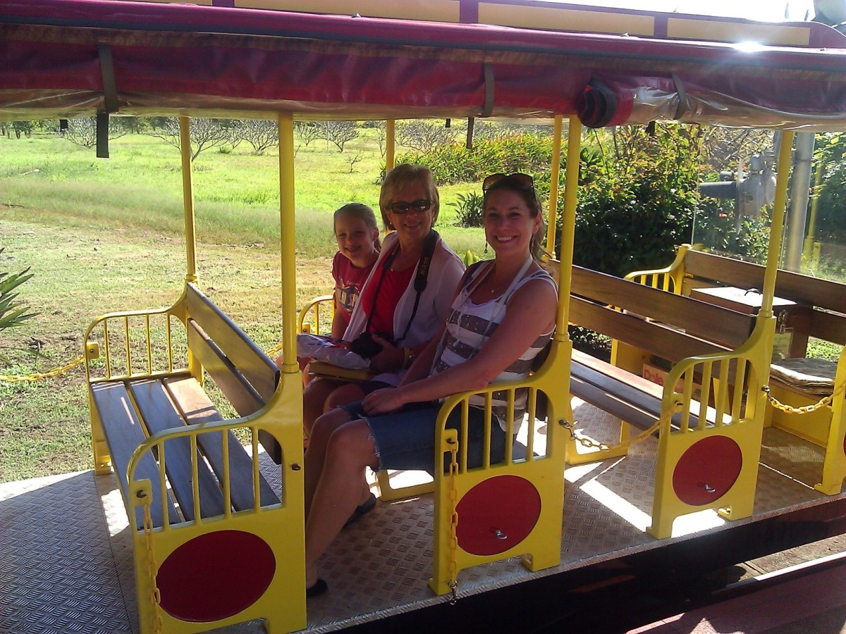 Riding the train at the Dole Plantation