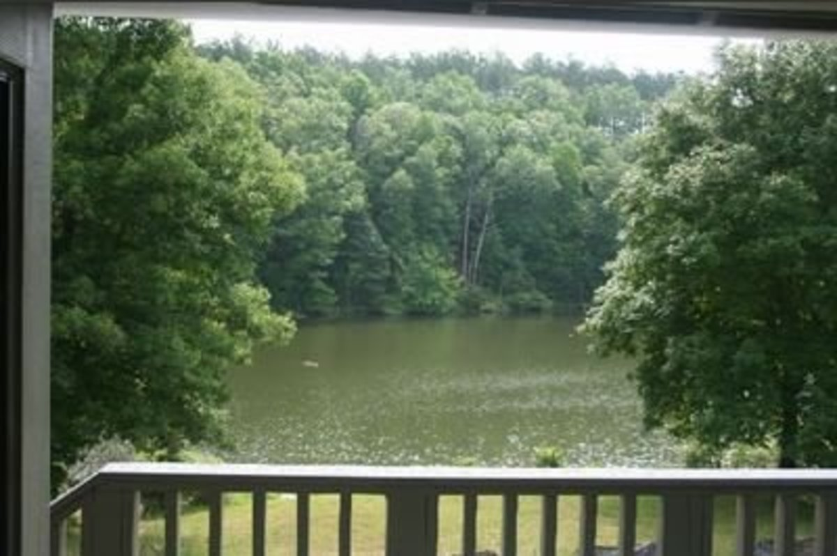 A beautiful of Lindsey Lake from one of the new cabins at David Crockett State Park.