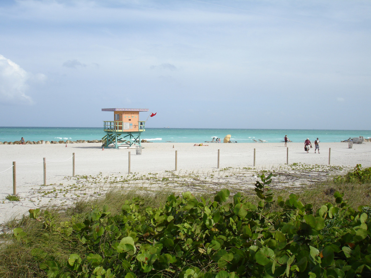 Florida's beaches are warm year-round.