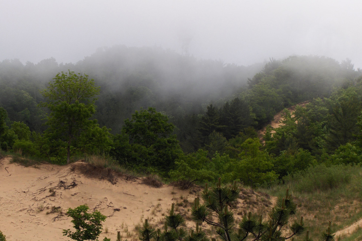 A foggy Mount Baldhead viewed from Oval Beach (2011)
