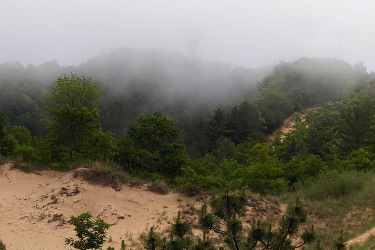 A foggy Mount Baldhead viewed from Oval Beach (2011)