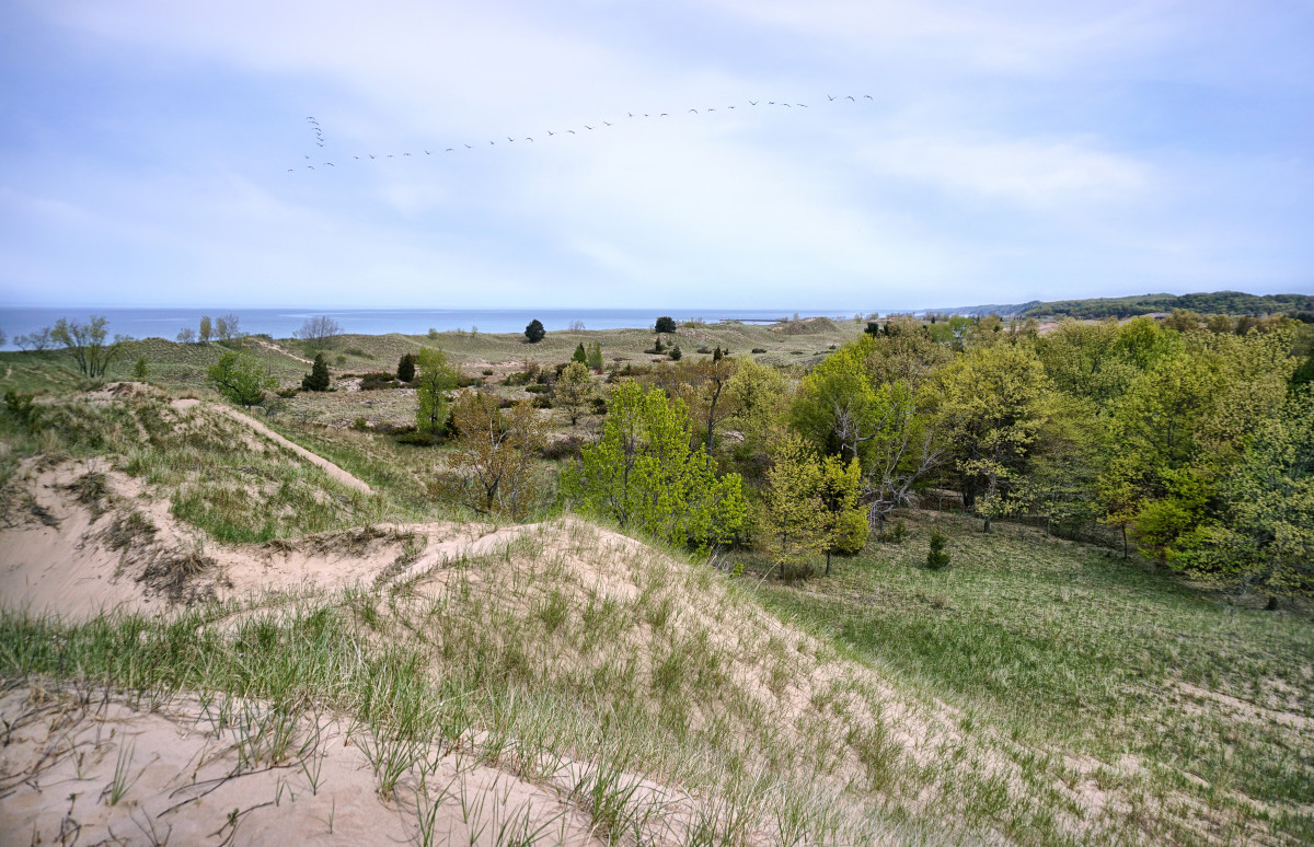 Springtime view of Saugatuck Harbor Natural Area viewed from Mount Baldy park area