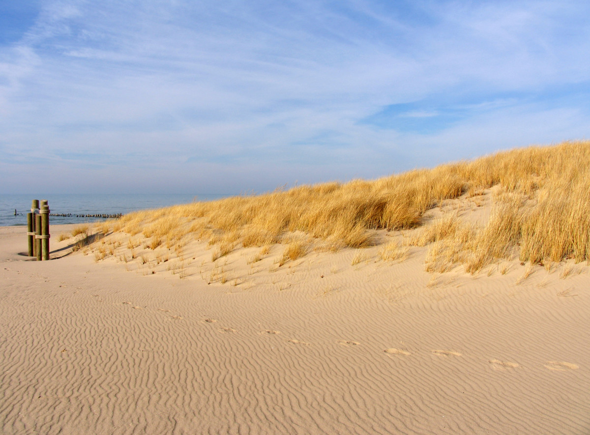 November, 2012, dune from most northern end of Oval Beach