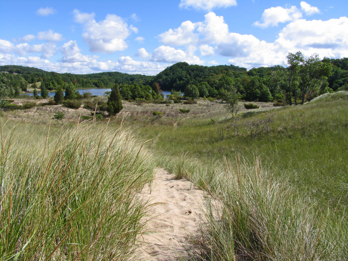 View point from dune formation where the Kalamazoo River mouth was filled in during the early 1900s creating Lake Oxbo seen in the background