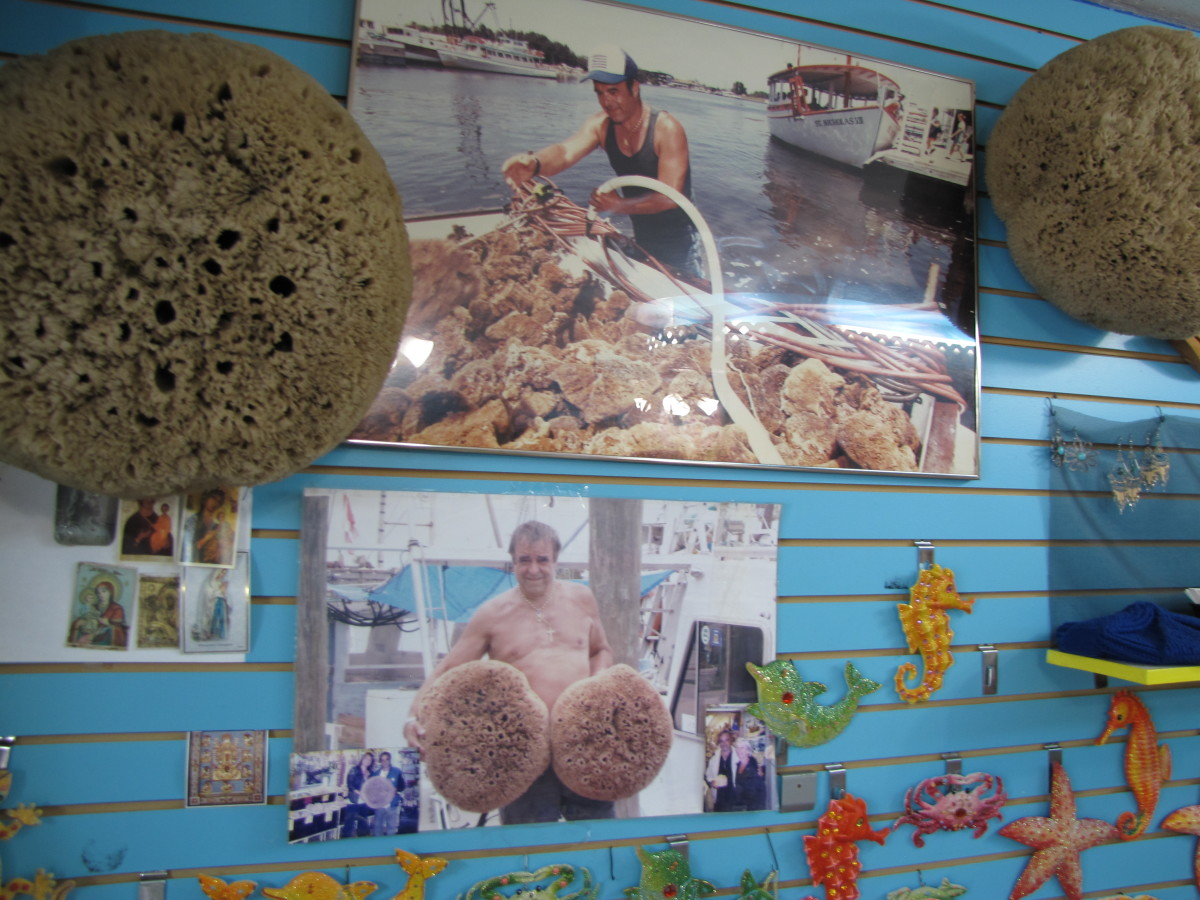 tarpon-springs-florida-sponge-capital-of-the-world