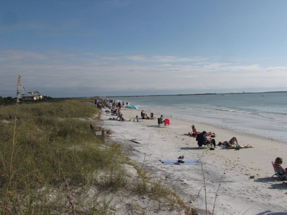 Honeymoon Island State Park beach