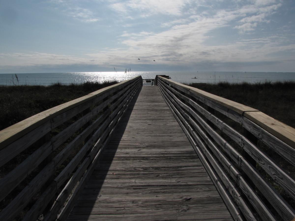 Honeymoon Island State Park Beach