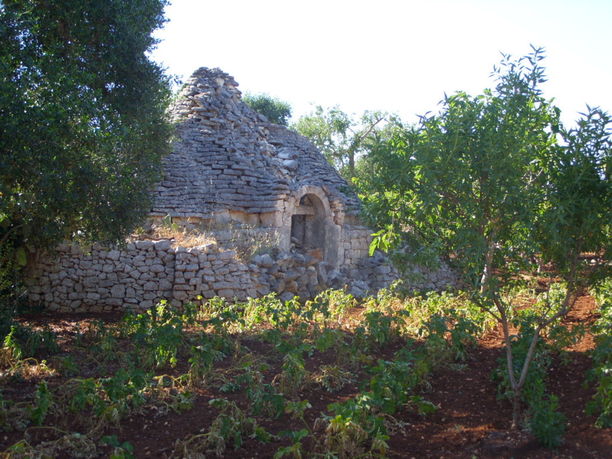 Trullo are unique to the region of puglia—this is an old original style trullo next to our property.