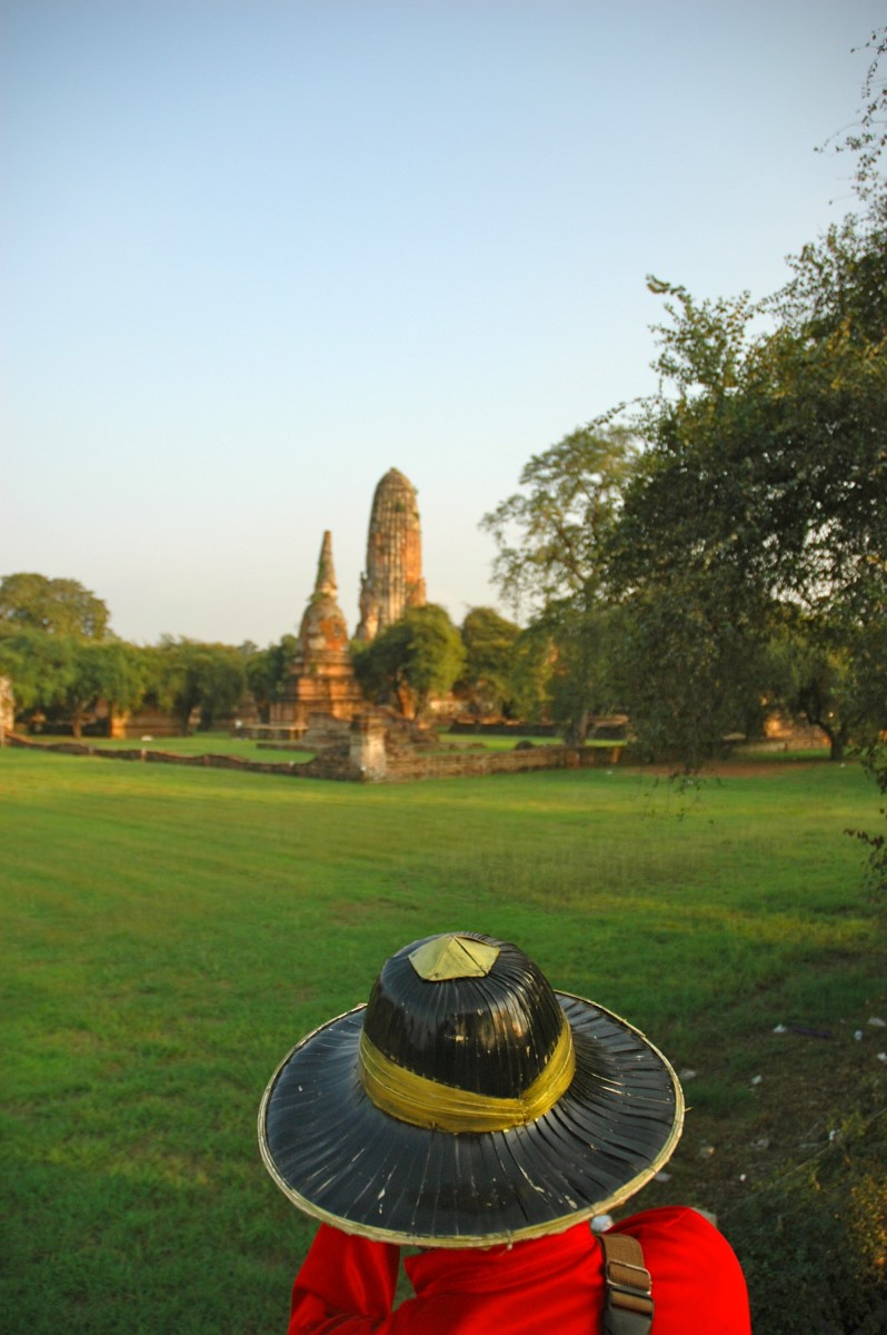 The view over our mahout