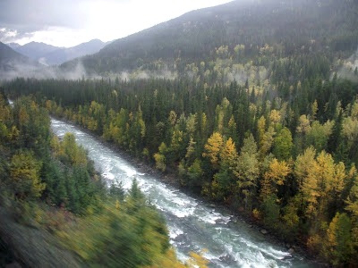 British Columbia from the train