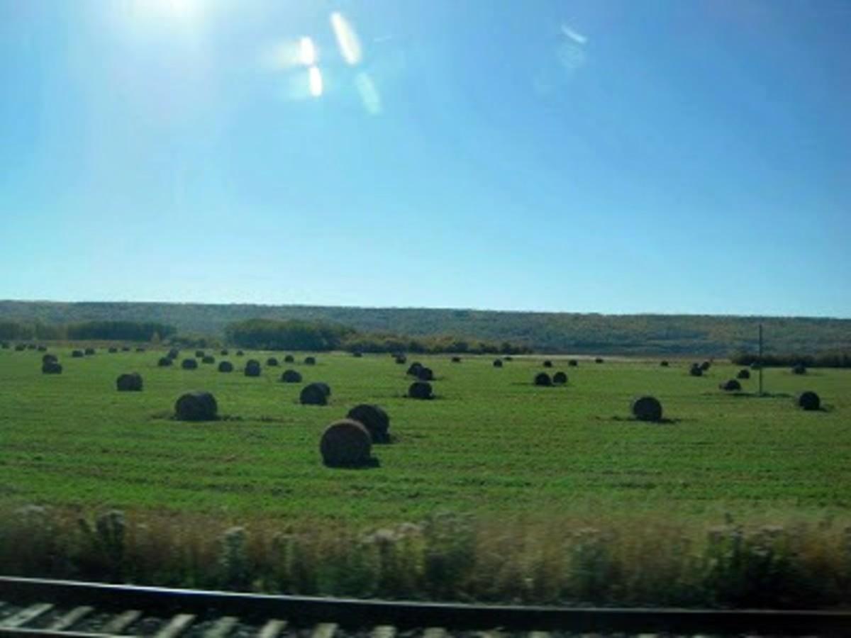 Saskatchewan from the train
