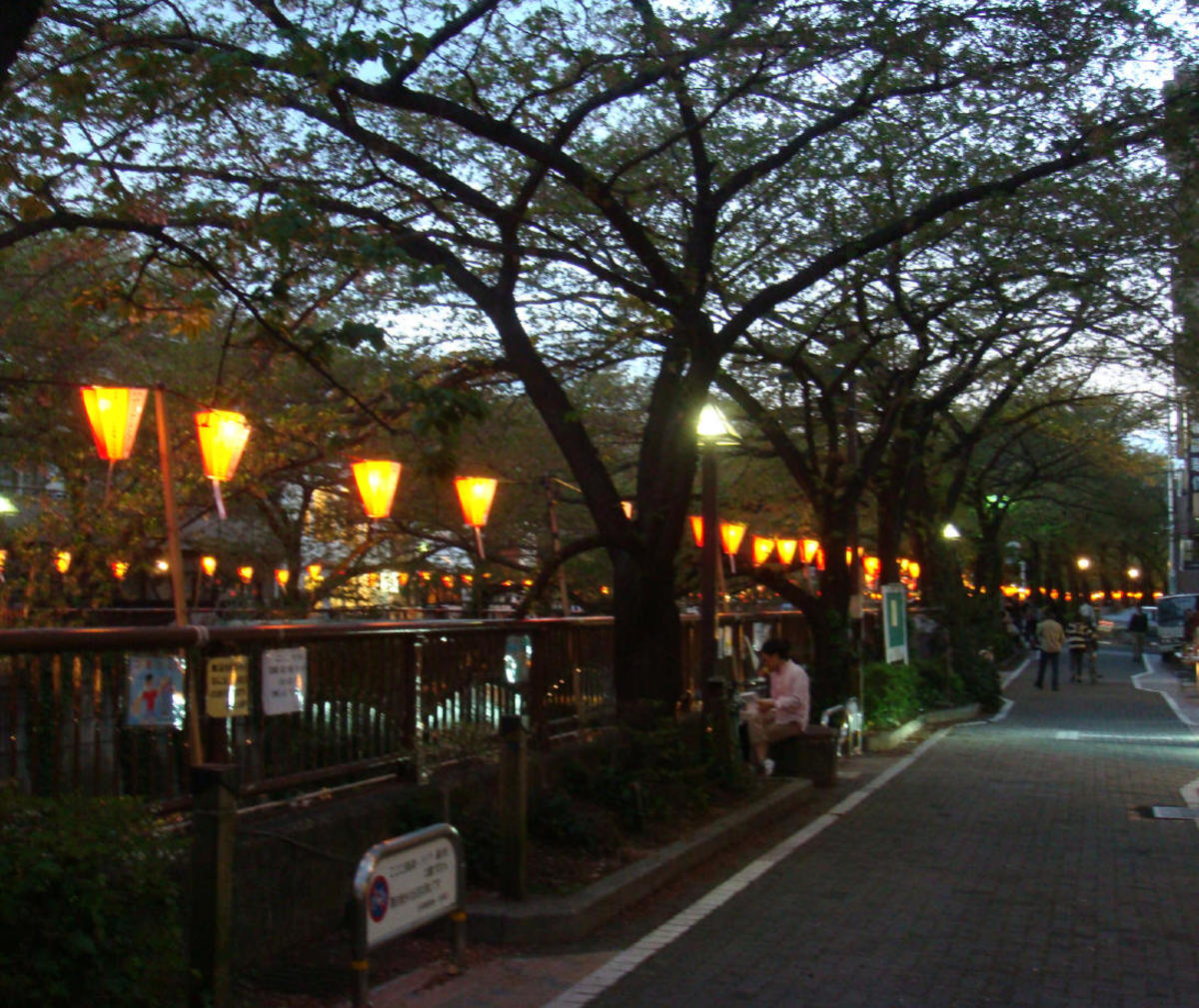 Pedestrian street beside the Meguro river