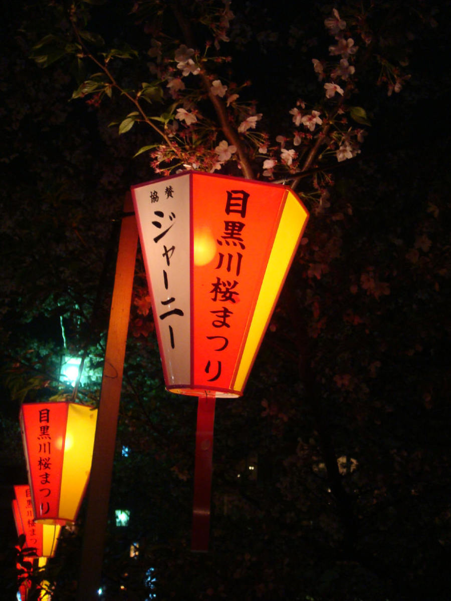 Lit lanterns around Meguro river
