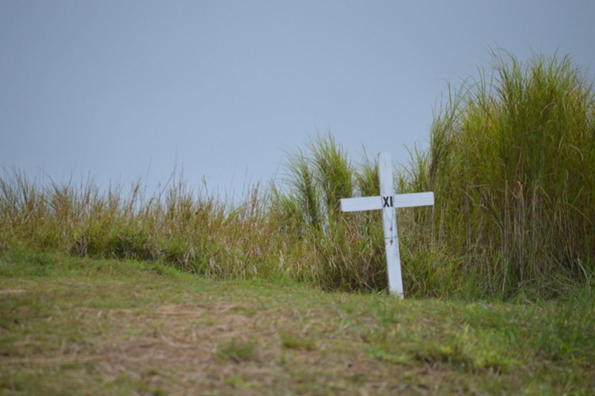 Cross XI, where the paths split.