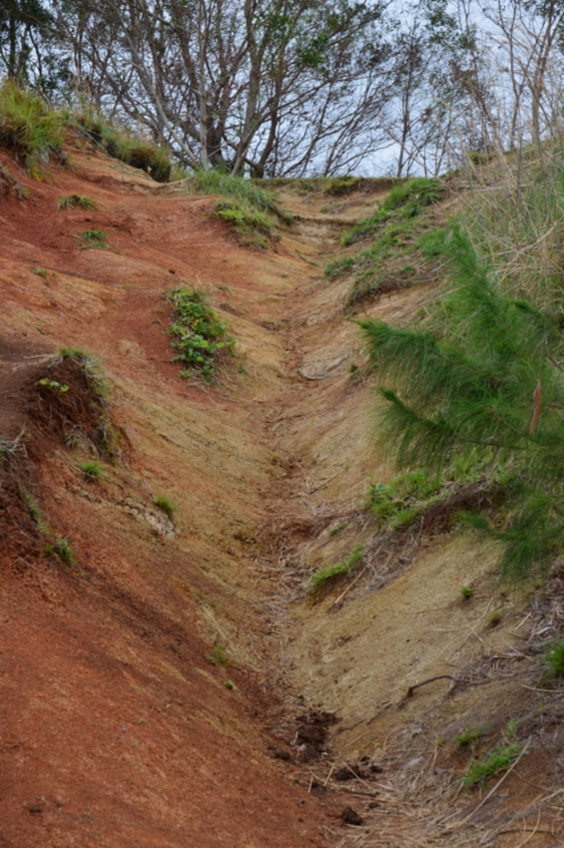 The trail is pretty steep in places!