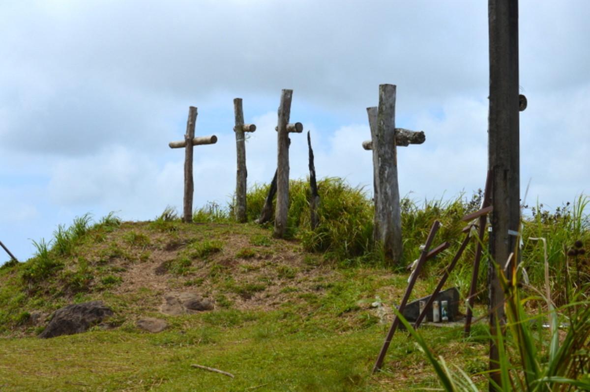 Lamlam crosses