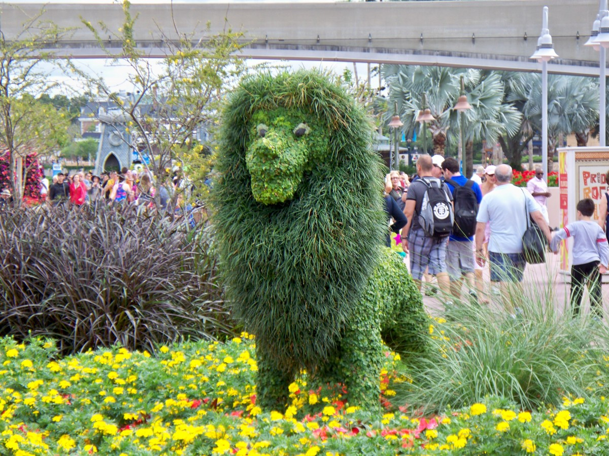 Simba - part of Epcot's International Flower and Garden Festival