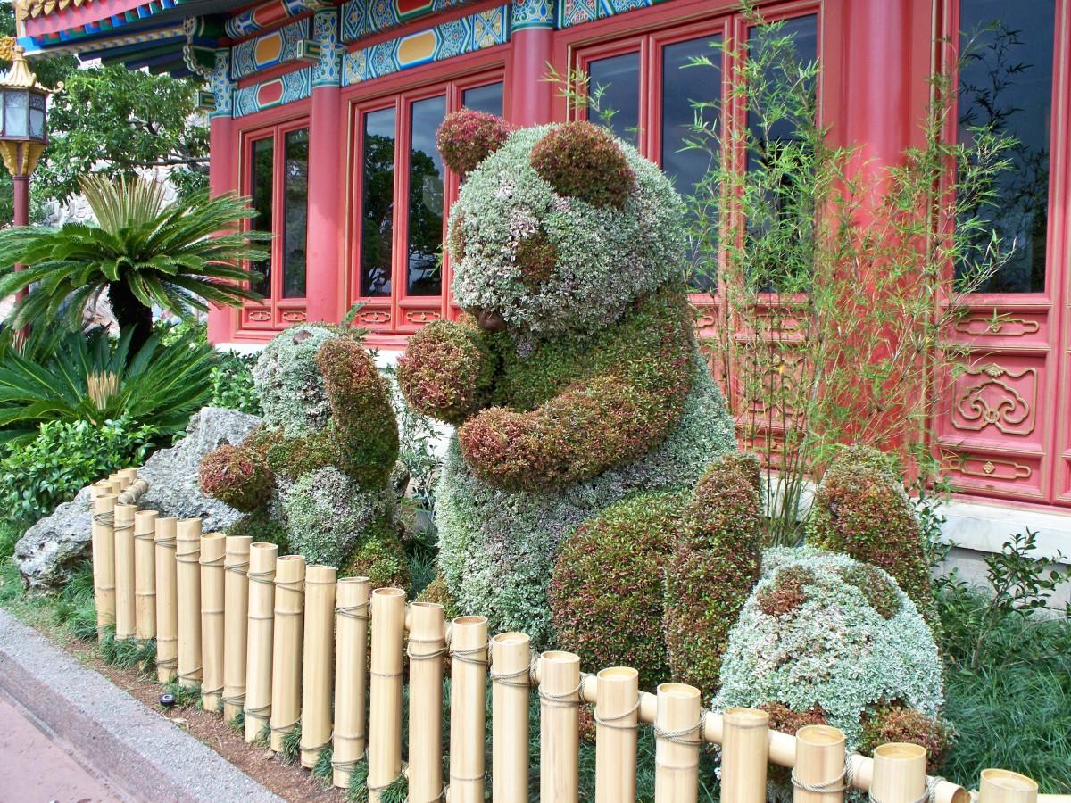 Pandas - part of Epcot's International Flower and Garden Festival