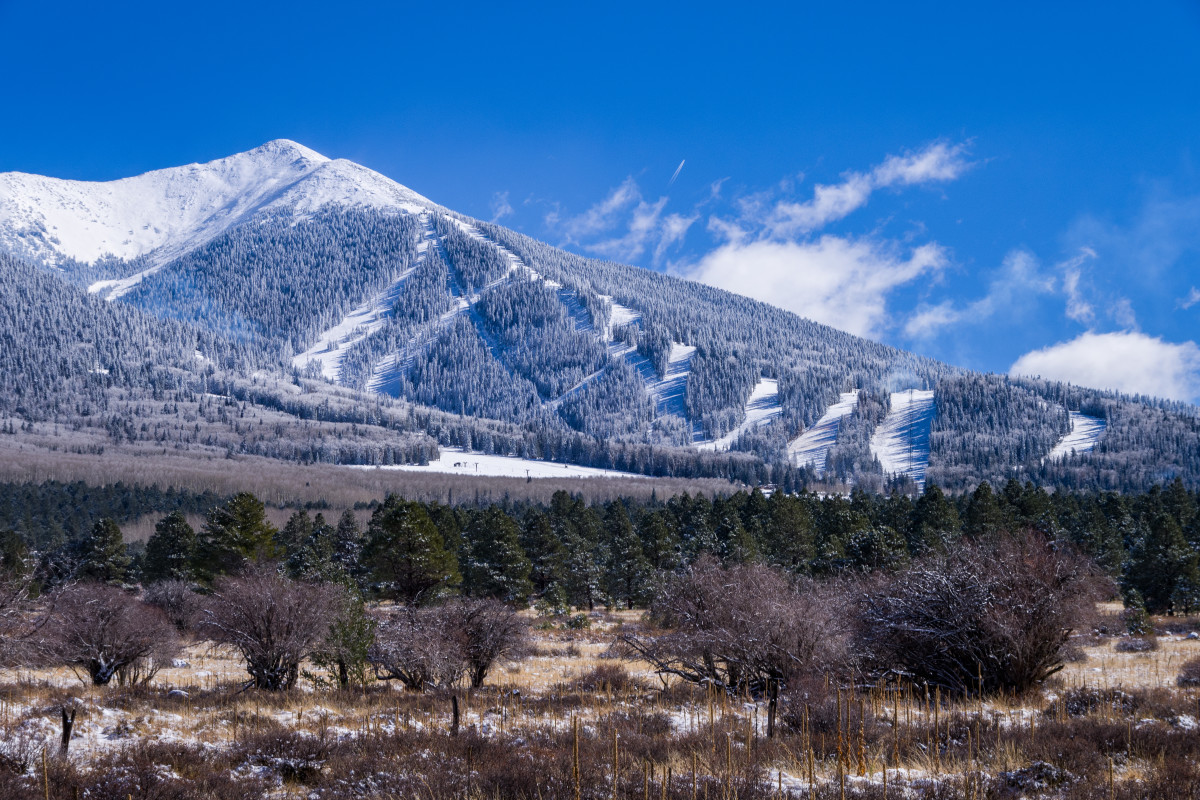 Winter in the San Francisco Peaks