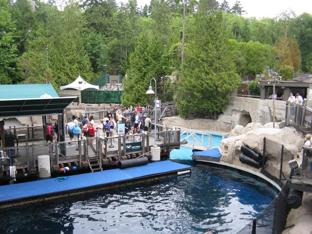 An outdoor scene at the aquarium