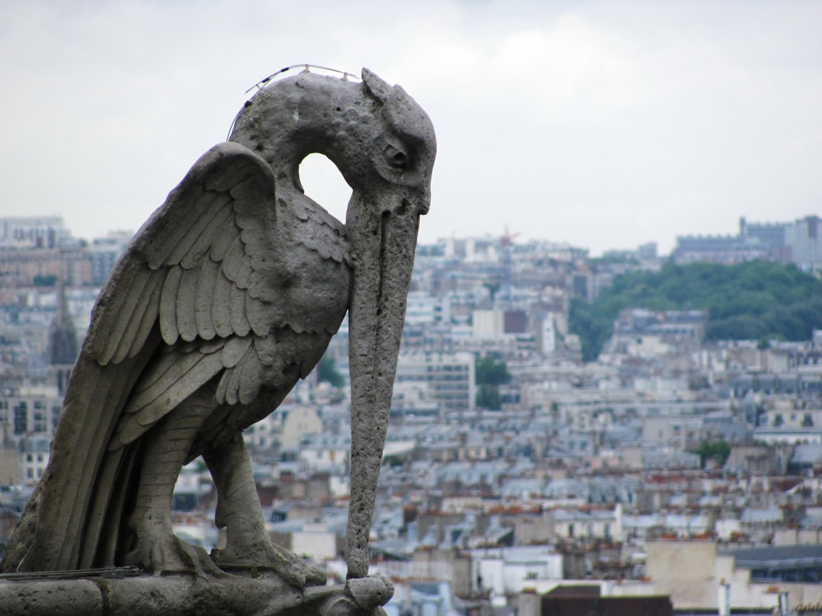 Although the heron gargoyle did a good job at scaring away evil spirits, he needed the wire on his neck to keep him pigeon-proof.  Let's hope he made it through the fire.
