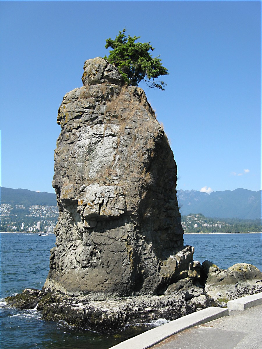 The Siwash Rock is an ancient seastack with a Douglas fir tree growing on top. It's located in Stanley Park by the seawall path.