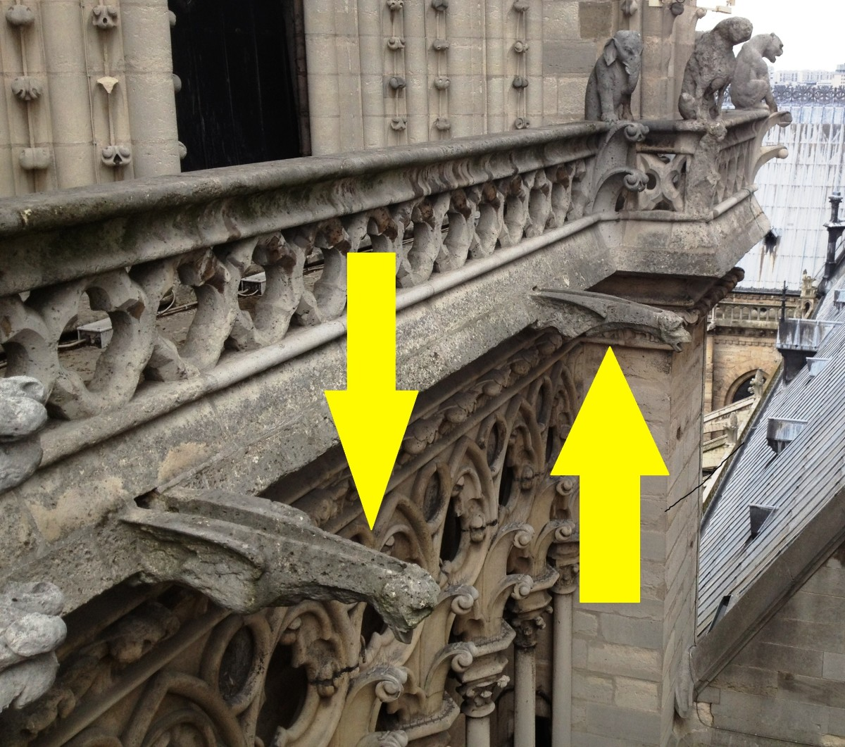 "The term ""gargoyle"" is often used incorrectly.  Notice that these gargoyles are actually functional drainspouts.  Chimera are pictured in the distance."