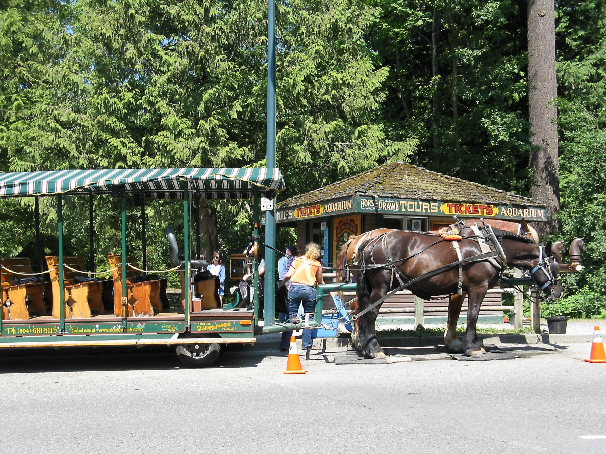 Horse-drawn carriages can be boarded by the information centre.