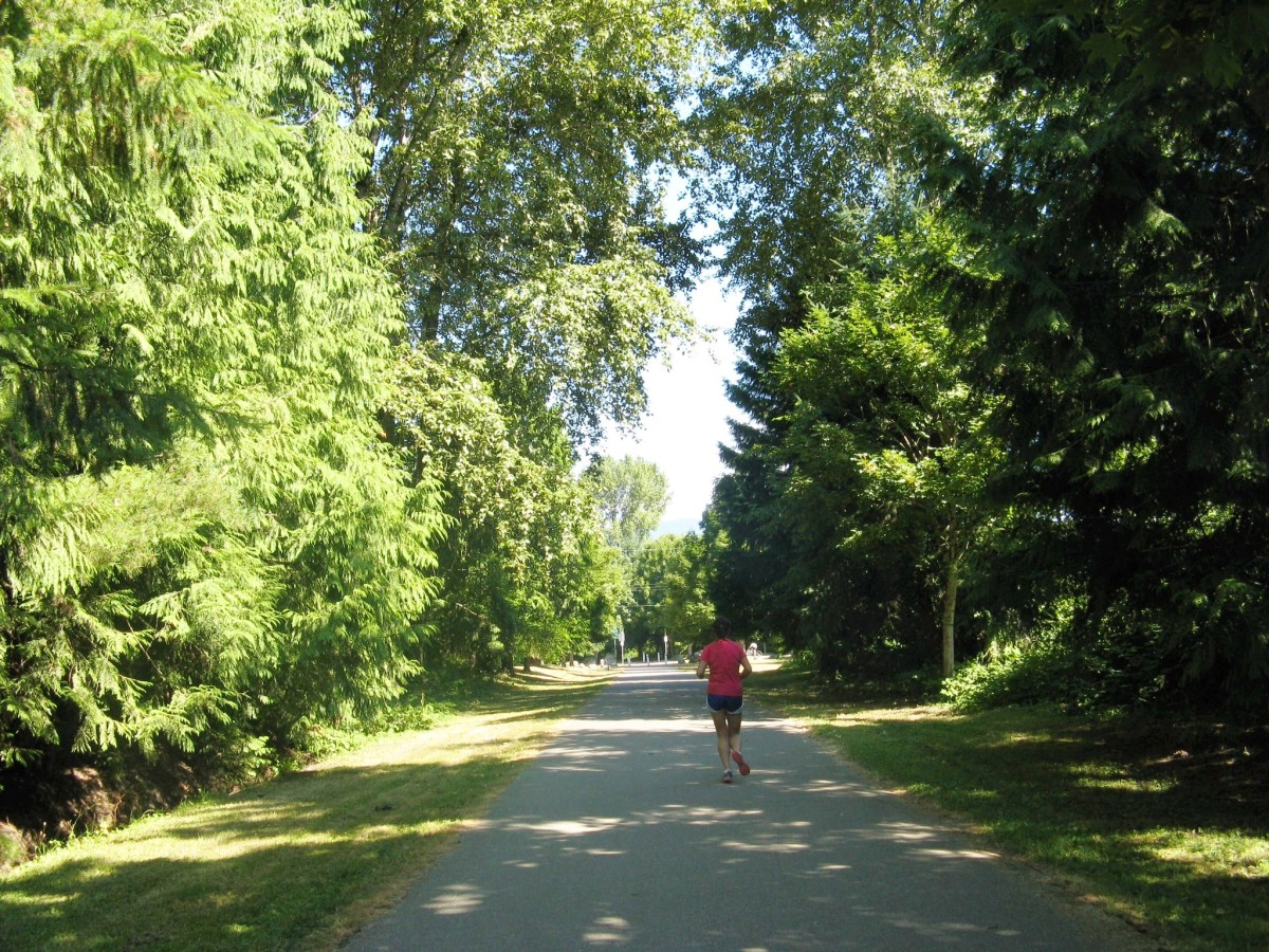 A jogger runs along the Burnaby Mountain Urban Trail