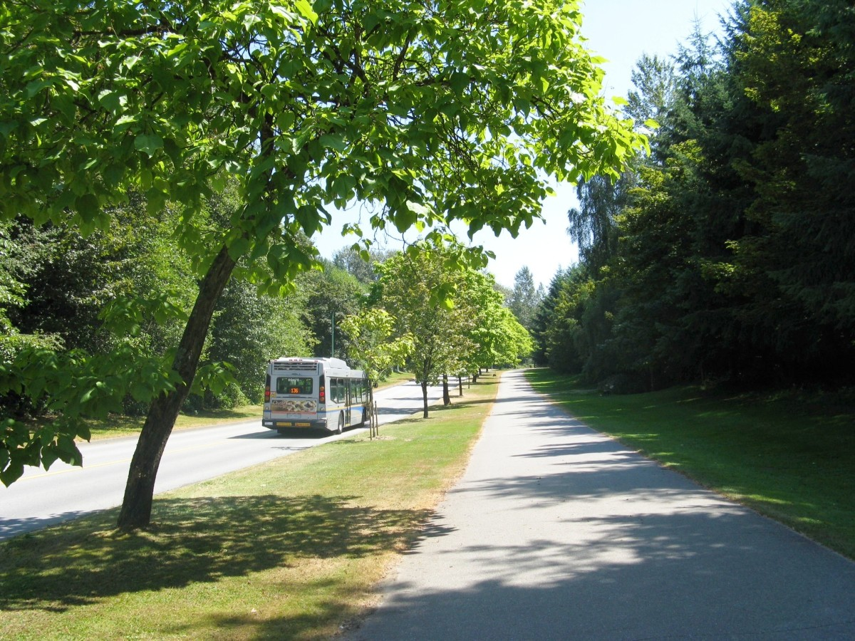 Part of the Burnaby Mountain Urban Trail