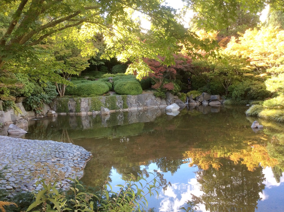 Another view of the Momiji Japanese Garden