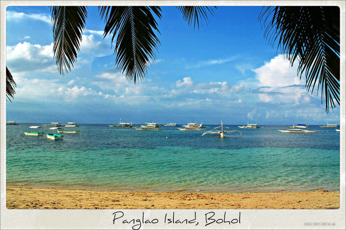 Panglao Island, Bohol boasts some of the best diving spots in the Philippines, with about 250 different species of crustaceans and 2,500 species of mollusks.