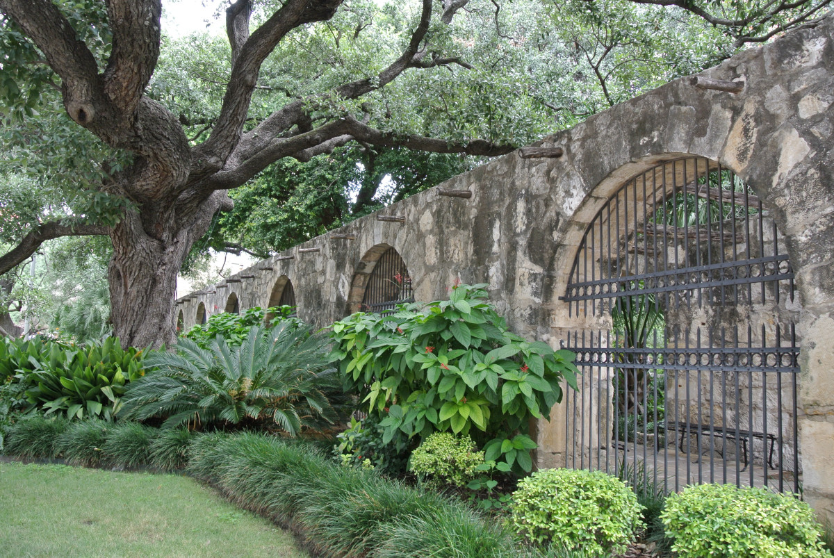 The beautiful grounds outside of The Alamo