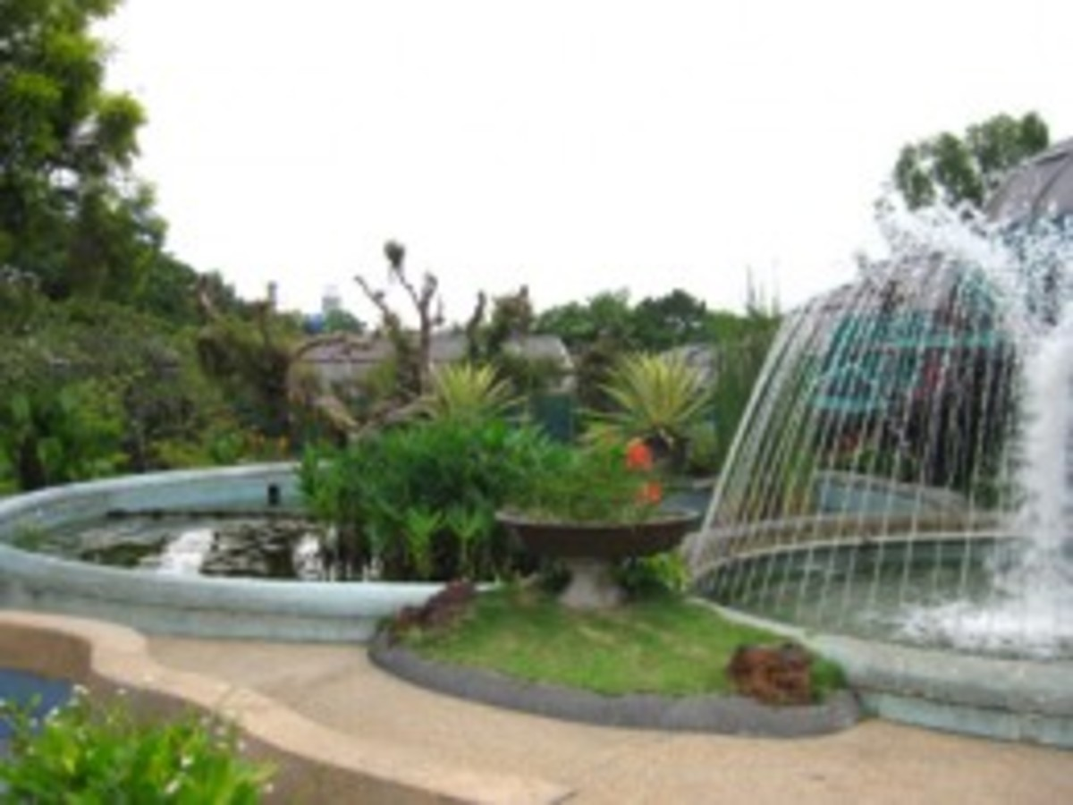 Further gardens near the Hibiscus Gardens.
