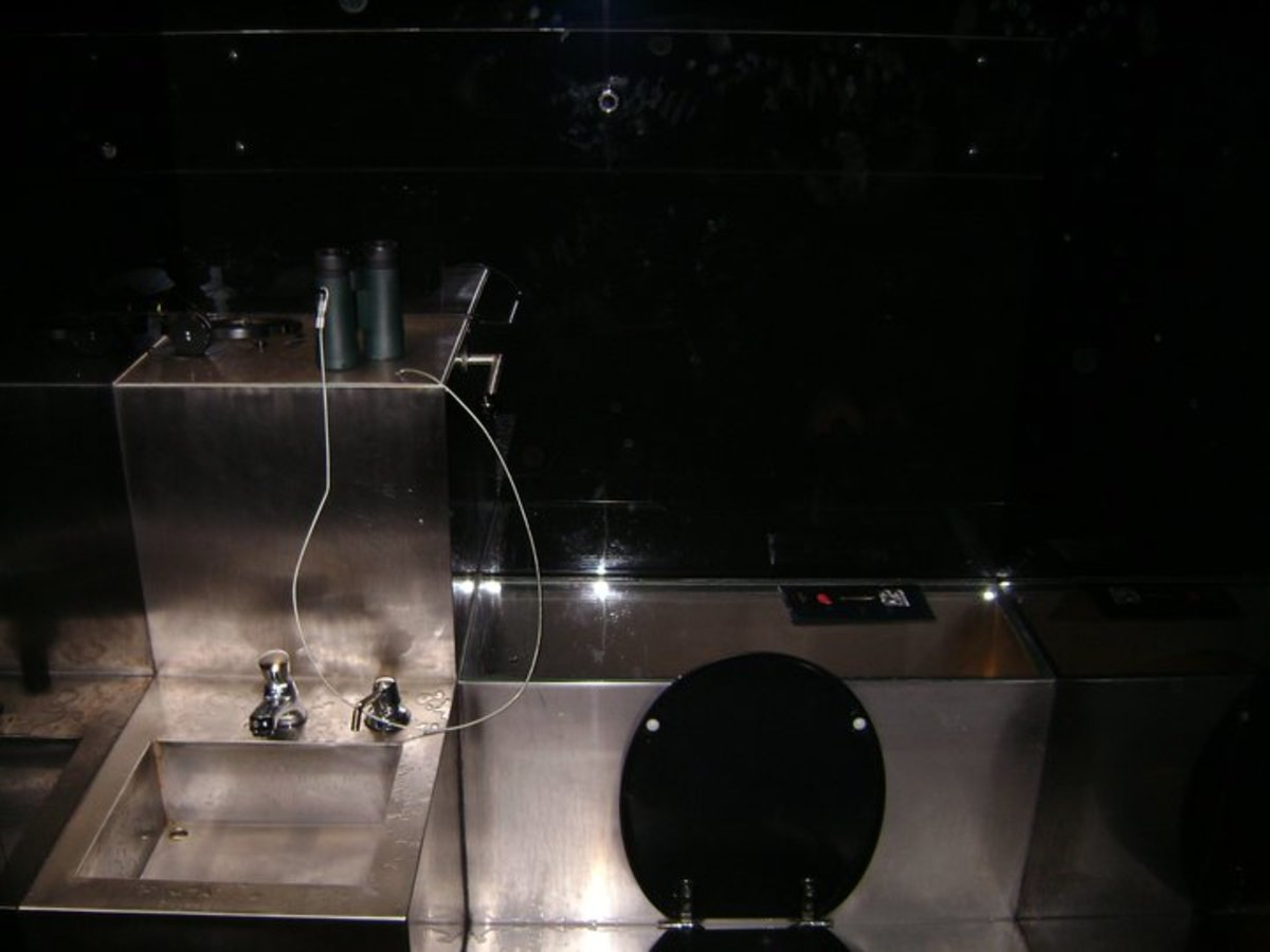 Locus Focus 2010, created by Wolfgang Gantner. Described as mixed media including mirrors and lavatory.