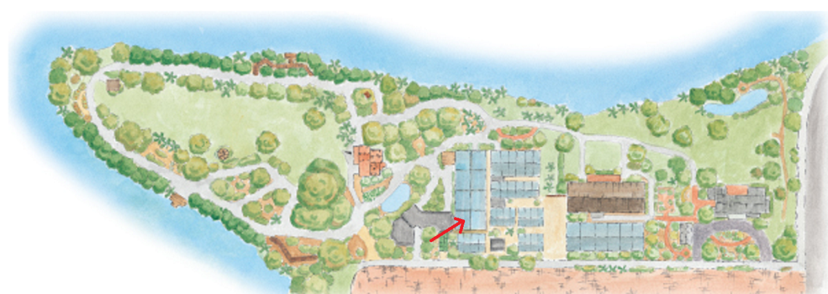The arrow is pointing to the tropical conservatory, one of eight greenhouses on the property. The others are devoted to research and not open to the public.