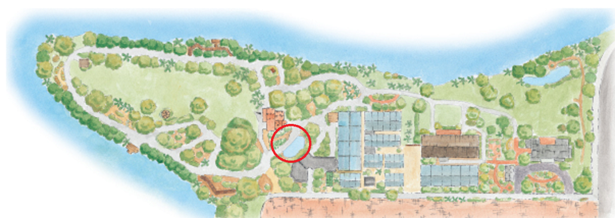The encircled area shows the location of the koi ponds and the bamboo groves across the walk.