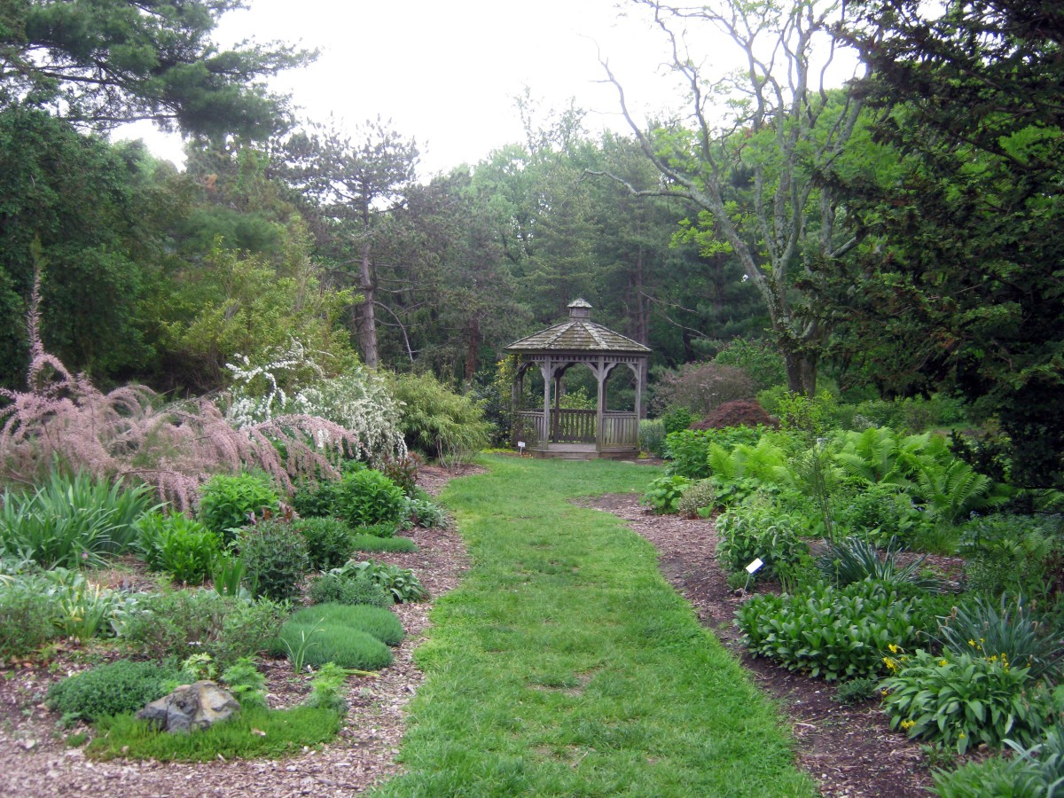 Garden at Cylburn
