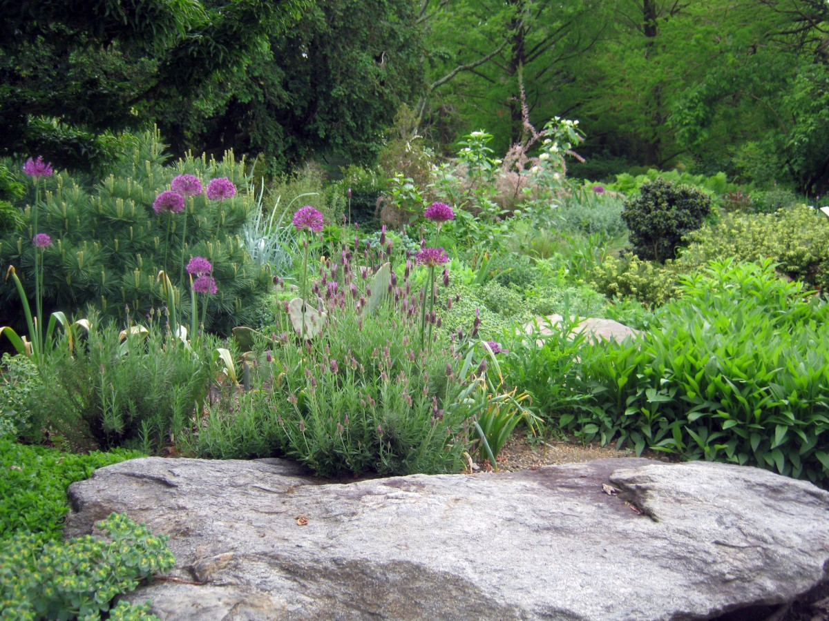 Cylburn Arboretum Rock Garden