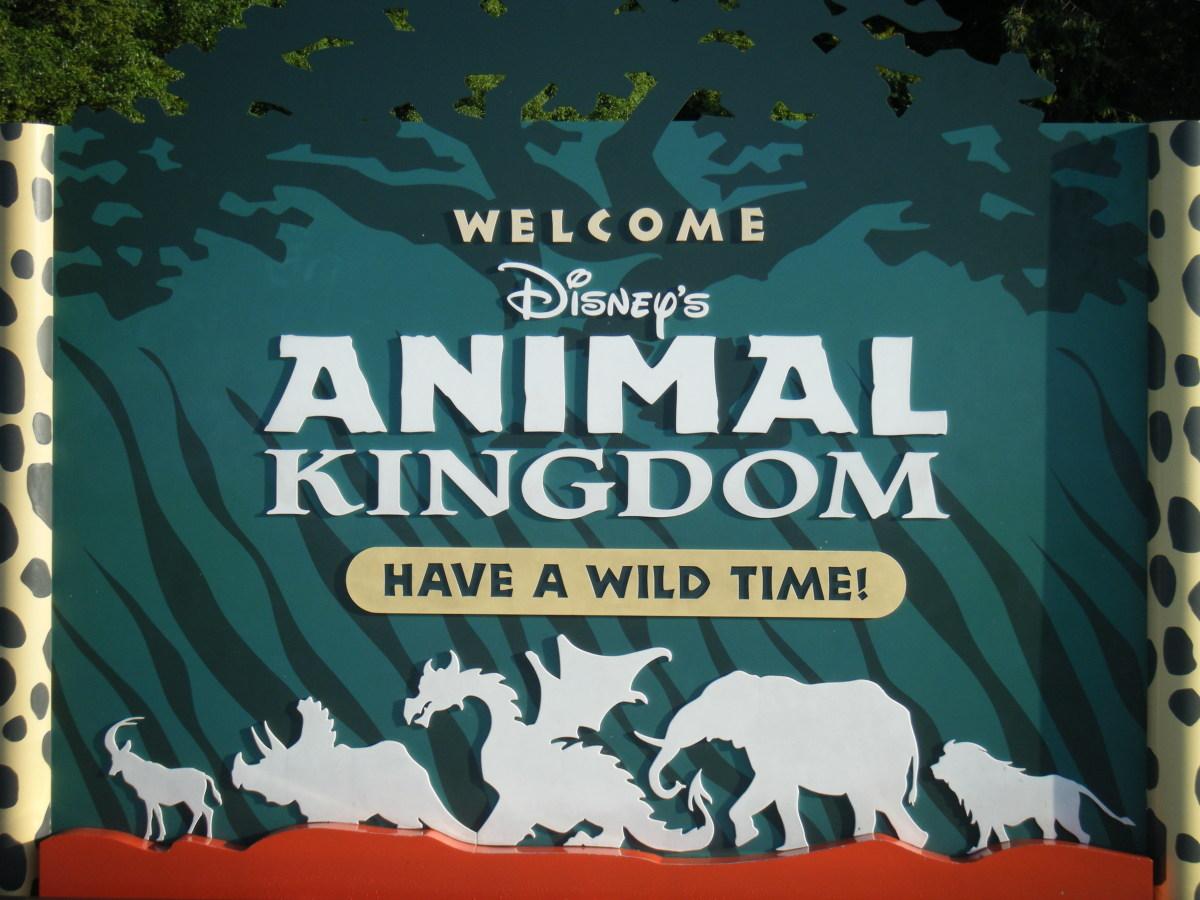 Top Ten Things to Do at Walt Disney World: Animal Kingdom