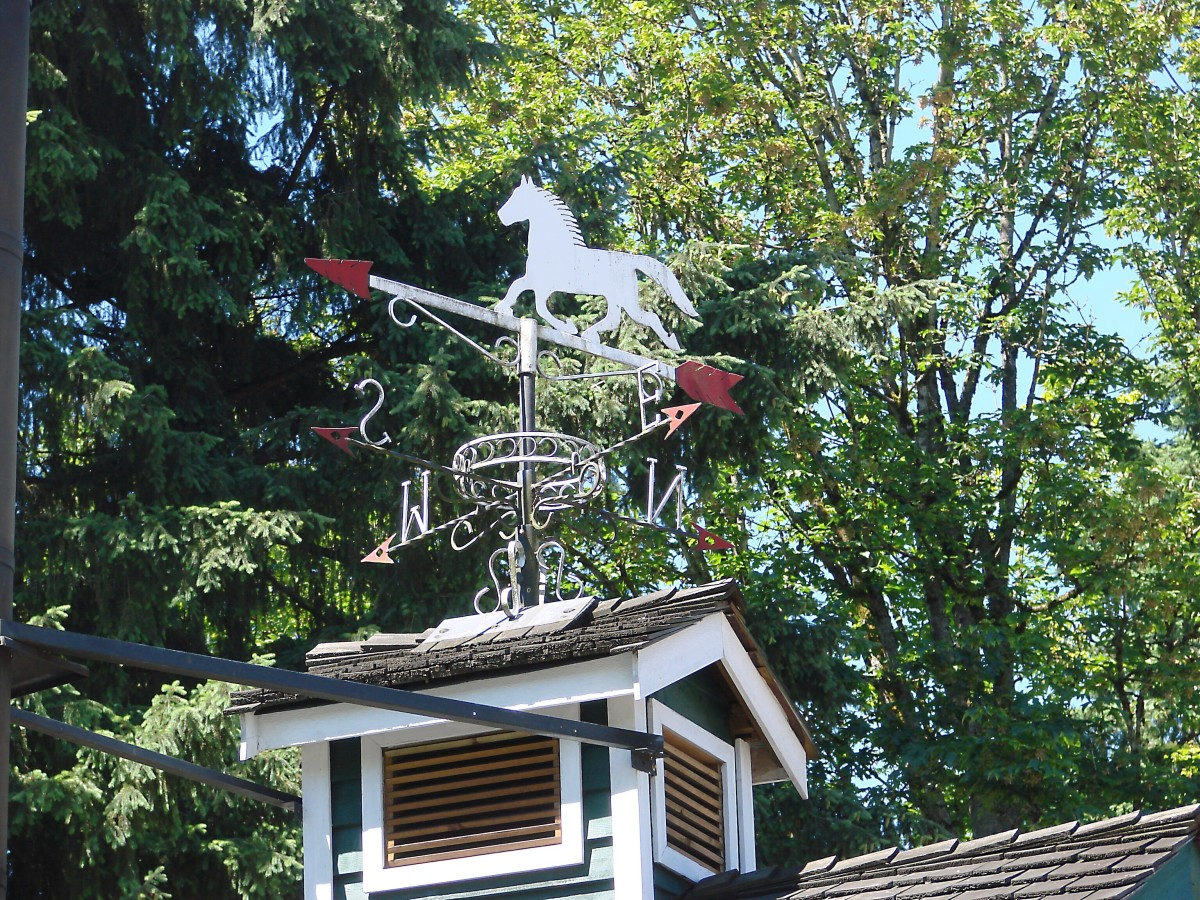 A weather vane at the museum
