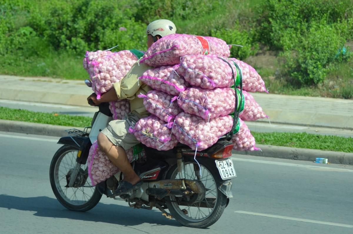 Transport, Vietnamese style (c) A. Harrison