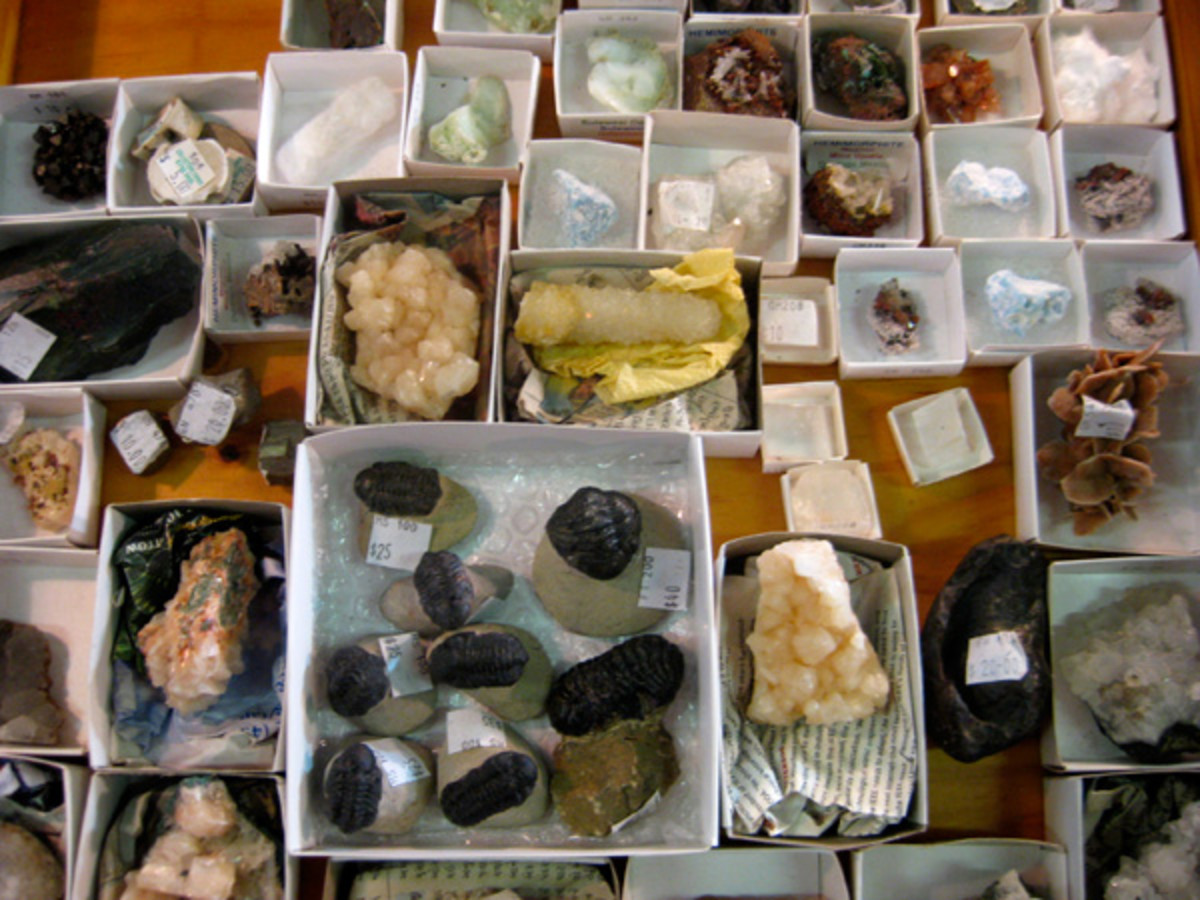Some of Vin and Nola's minerals, fossils and rocks.