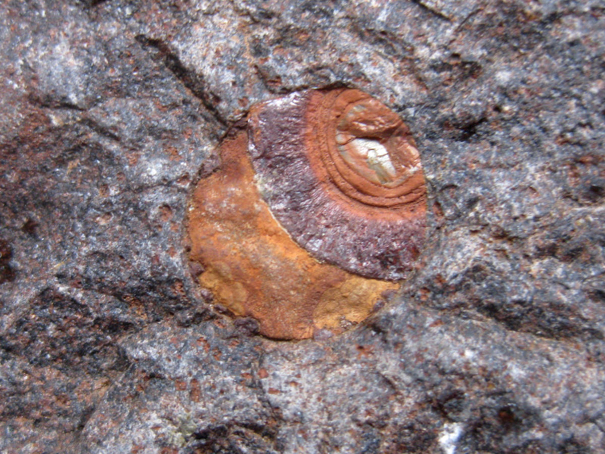 "Exposed agate ""egg"" in the basalt."
