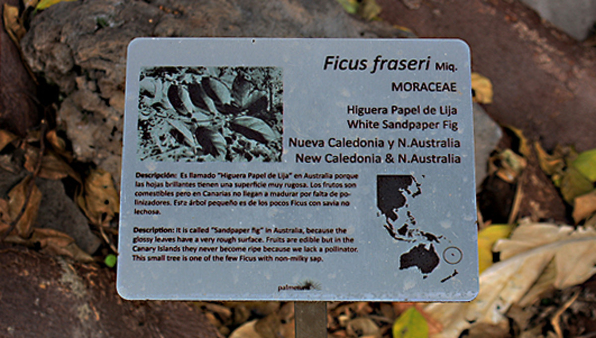 One of the detailed labels with maps and information in Spanish and English