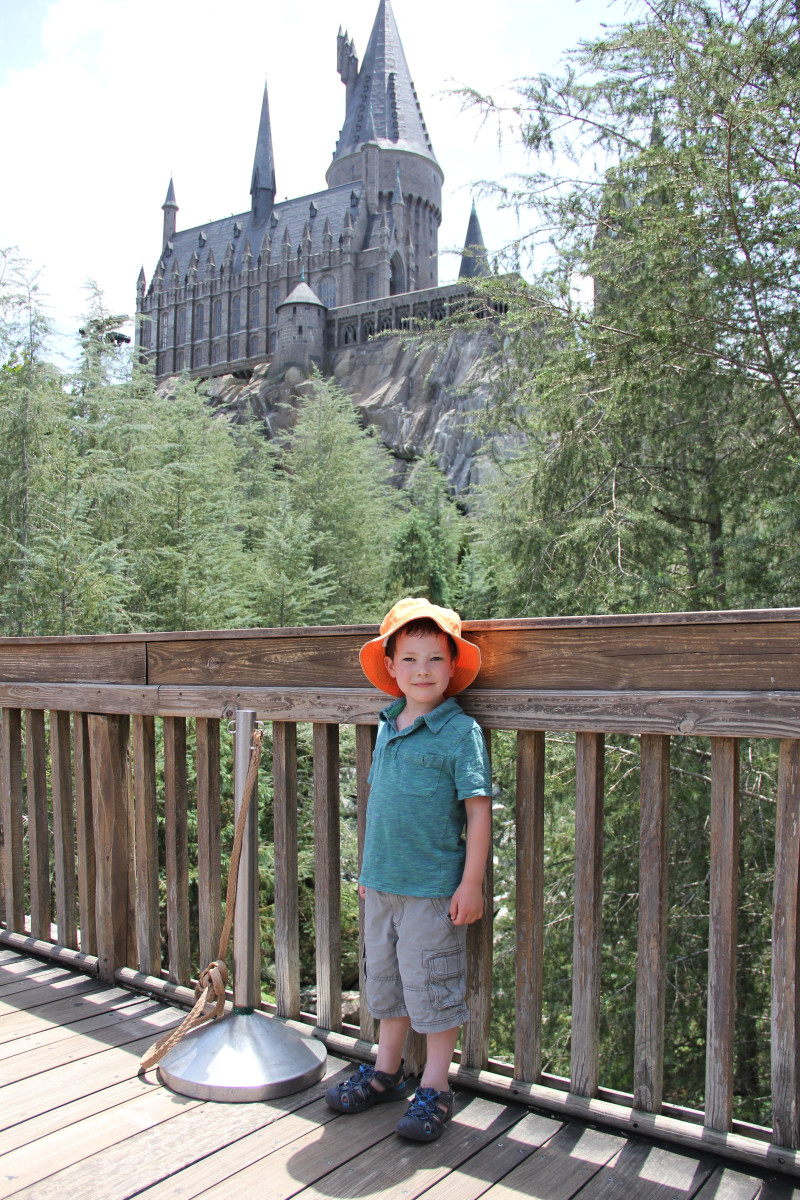 On the bridge between Jurassic Park and Harry Potter world.