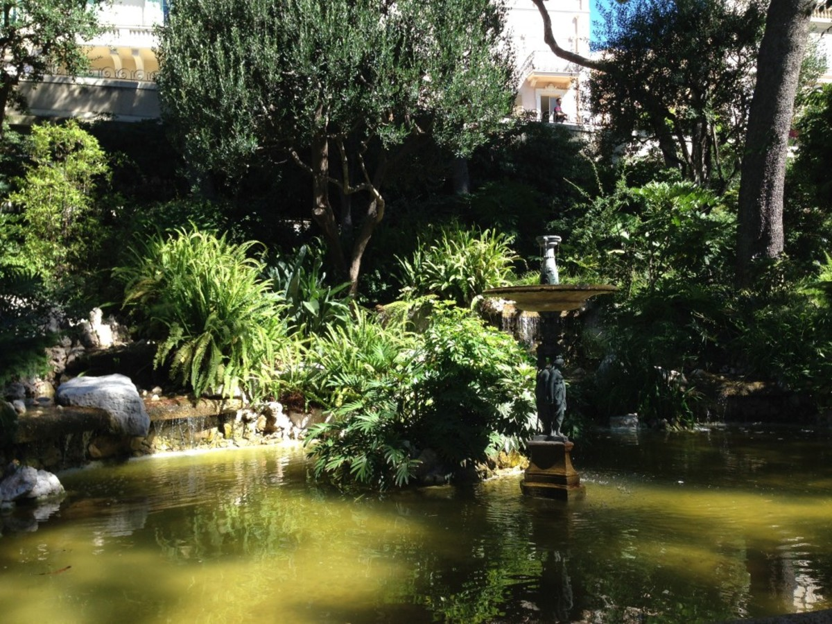 Part of the Jardins Saint Martin in Monaco-Ville, with trees, bushes and ferns surrounding a pond